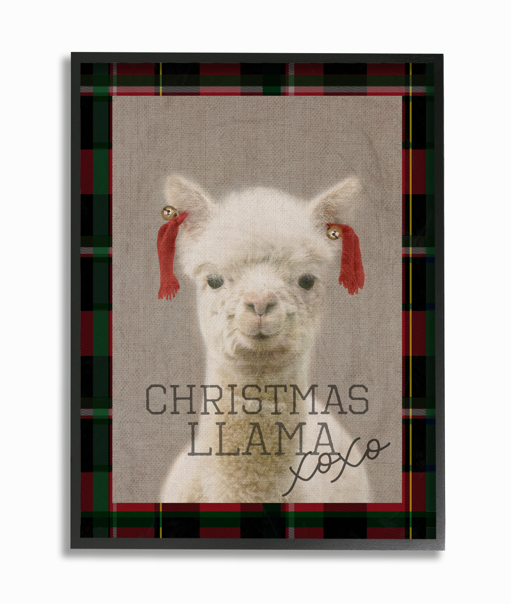 The Stupell Home Decor Collection Christmas Llama Xoxo Framed Giclee Texturized Art by Stupell Industries