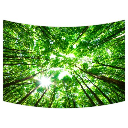YKCG Spring Green Trees Early Monring Sun Forest Wall Hanging Tapestry Wall Art 90x60 inches