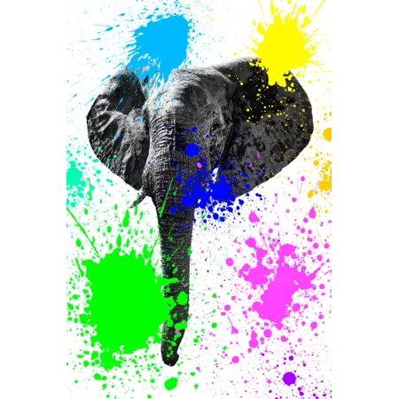 Safari Colors Pop Collection - Elephant IV Print Wall Art By Philippe Hugonnard
