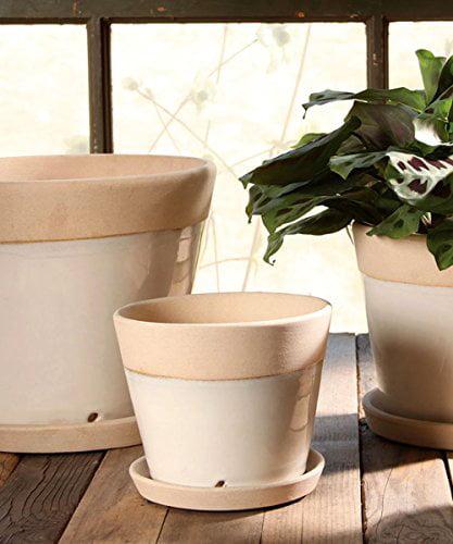 Begonia Grande Ceramic Cachepot White by HomArt