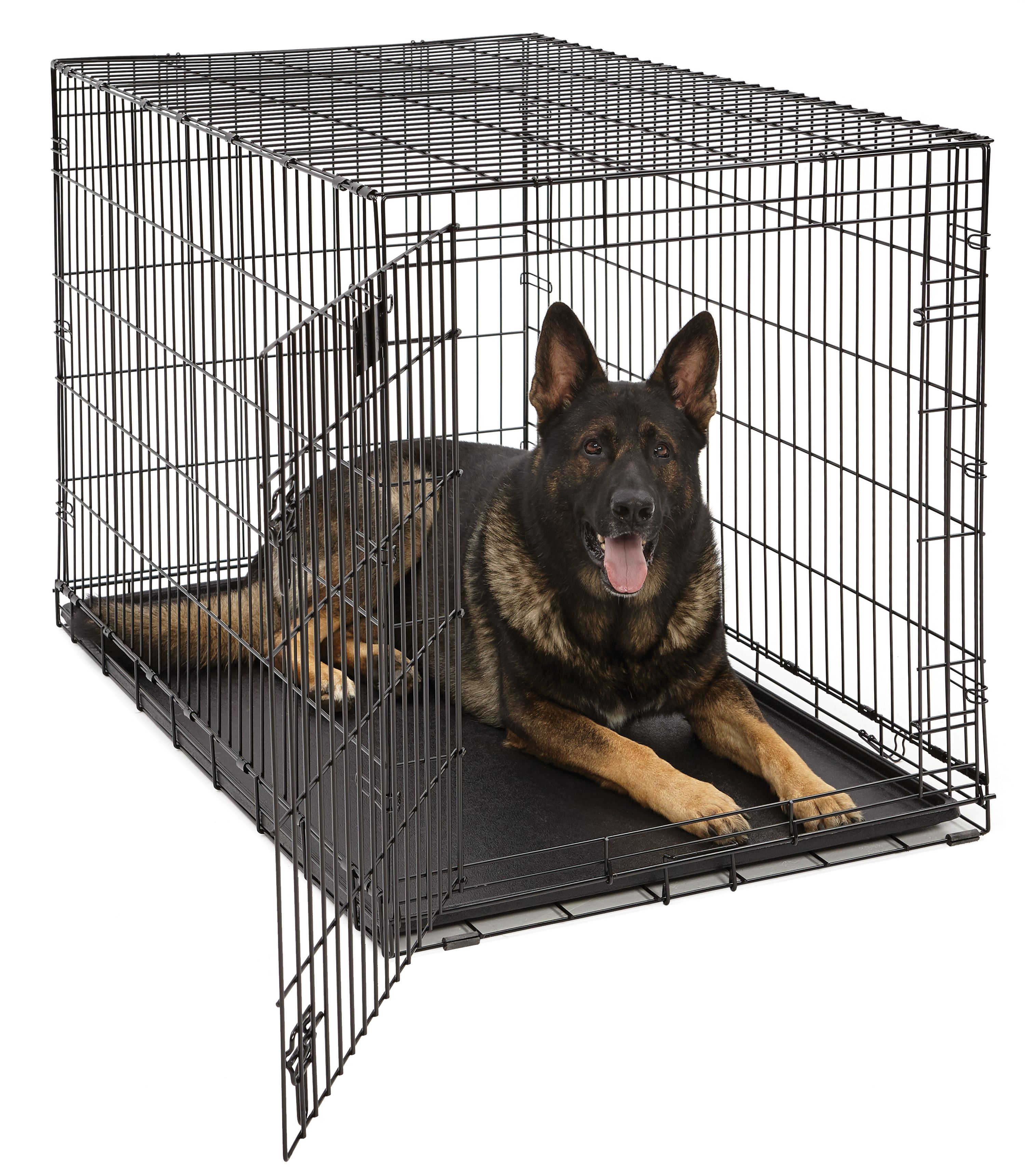 "MidWest 48"" Life Stages Single Door Dog Crate by MID-WEST METAL PRODUCTS CO INC"
