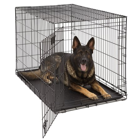 """MidWest 48"""" LifeStages Single Door Dog Crate"""