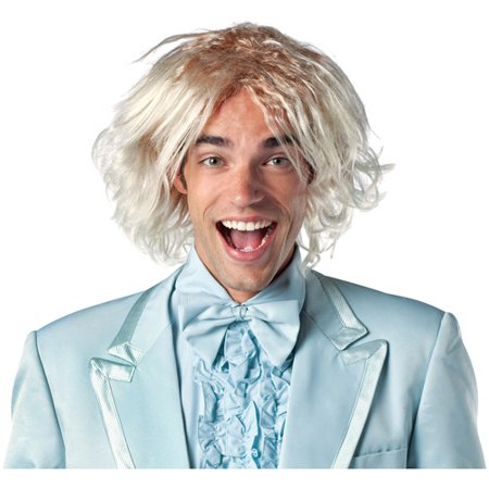 Dumb and Dumber Adult Halloween Wig Accessory - Wall Of Dub Halloween