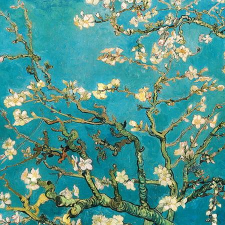 Almond Blossom 24 Quot X 24 Quot Canvas Wall Decor Walmart Com