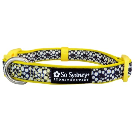 Crazy Daisy Yellow - Designer Cute Matching Dog Collar and Leash - Blooming Florals Collection