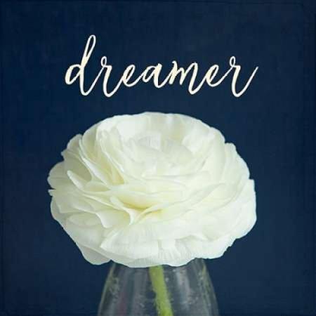 Dreamer Poster Print By Susannah Tucker Photography