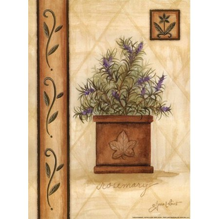 Tuscan Rosemary Poster Print by Annie Lapoint (9 x 12)