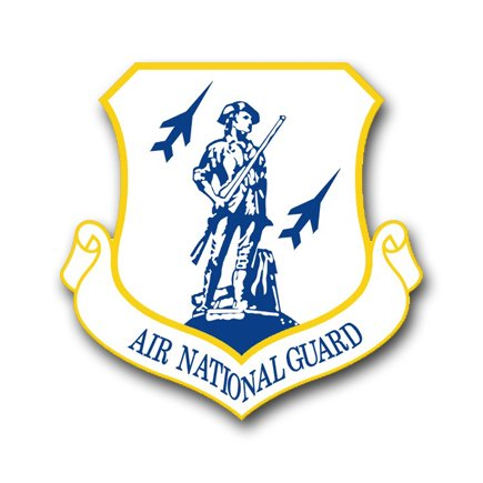 3.8 Inch Air Force Air National Guard Vinyl Transfer Decal
