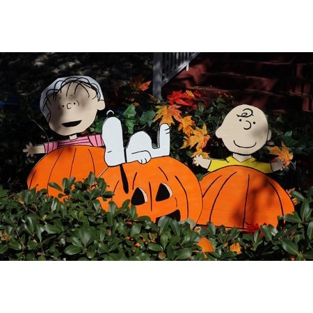 LAMINATED POSTER Snoopy Pumpkin Thanksgiving Charlie Brown Halloween Poster Print 24 x 36 - Halloween Events Poster