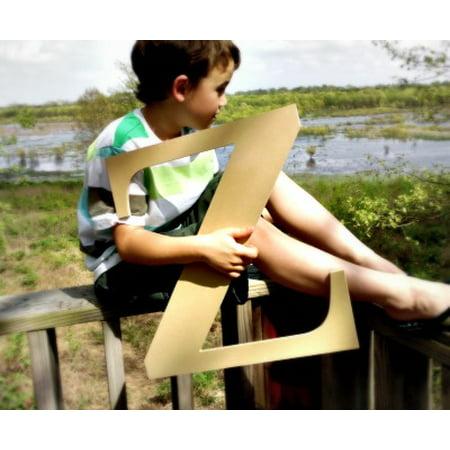 Wood Craft Letter Times Z 6'' Unfinished Wooden Wall Letter](Letter Z Crafts)
