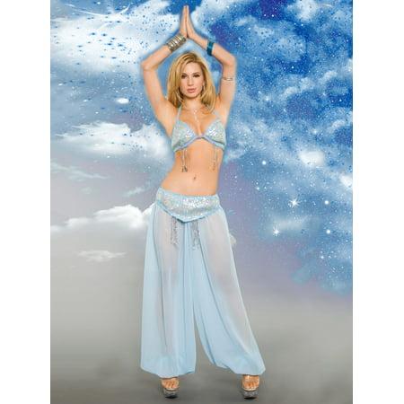 Adult Light Blue Heavenly Genie Sexy Costume