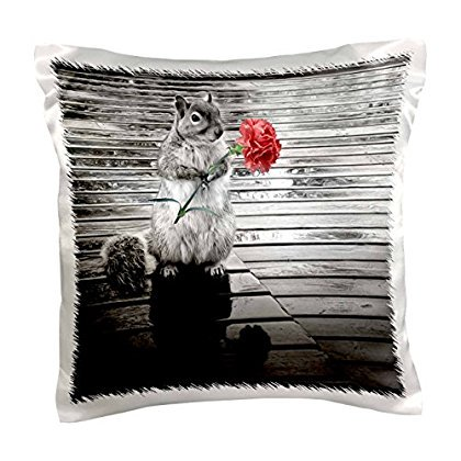 3dRose Sweet squirrel standing on a rainy deck holding a pink carnation, Pillow Case, 16 by - Lovely Pink Carnation