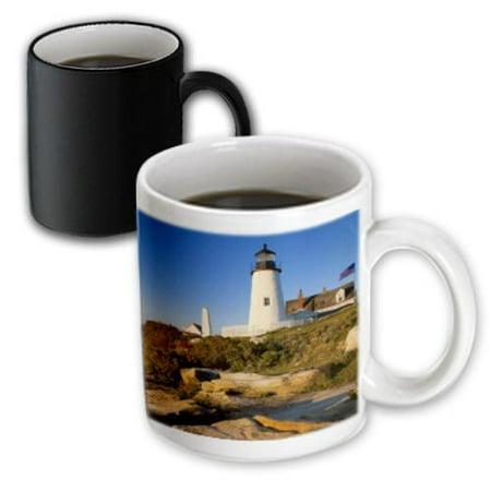 3dRose Pemaquid Point Lighthouse, Bristol, Maine, USA - US20 BJN0049 - Brian Jannsen, Magic Transforming Mug, - Bristol Mug