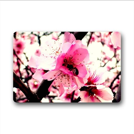 WinHome Natural Plant Peach Blossom Doormat Floor Mats Rugs Outdoors/Indoor Doormat Size 30x18 inches