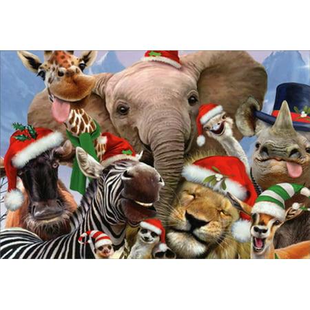 Giraffe Lion Bird - Nobleworks Elephant, Giraffe, Zebra, Lion, Rhino Funny Faces Howard Robinson Box of 12 Humorous / Funny Christmas Cards