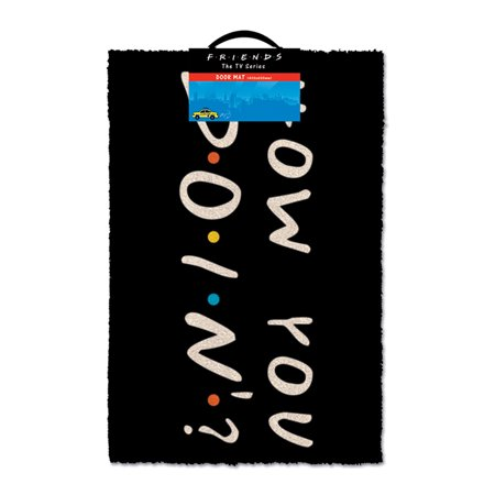 Friends - Doormat / Floor Mat (How You Doin?)(Size: 24