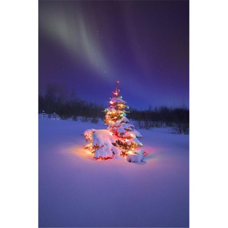 christmas tree glowing under the northern lights poster print by carson ganci 22