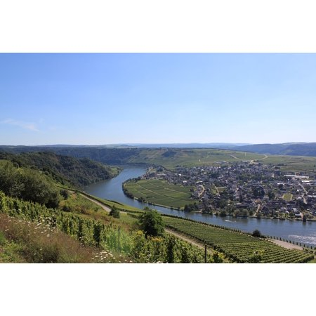 Canvas Print Landscape Steep Slope Mosel Vines Germany Vineyard Stretched Canvas 10 x