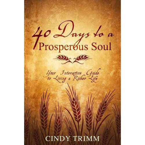 40 Days to a Prosperous Soul: Your Interactive Guide to Living a Richer Life