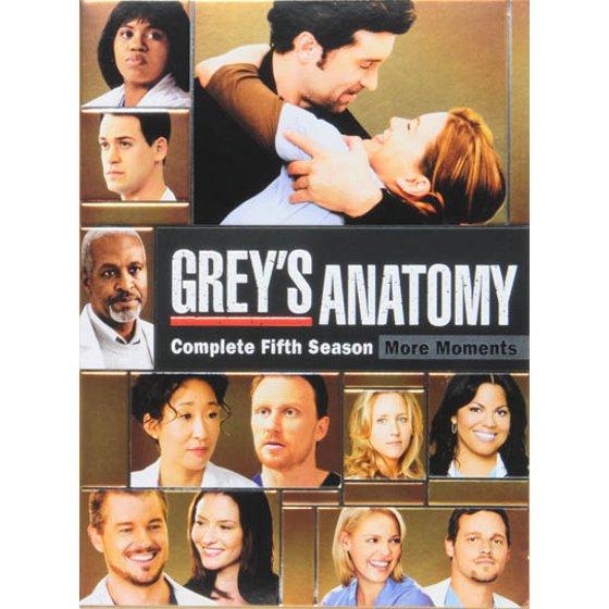 Greys Anatomy Complete Fifth Season Dvd Walmart