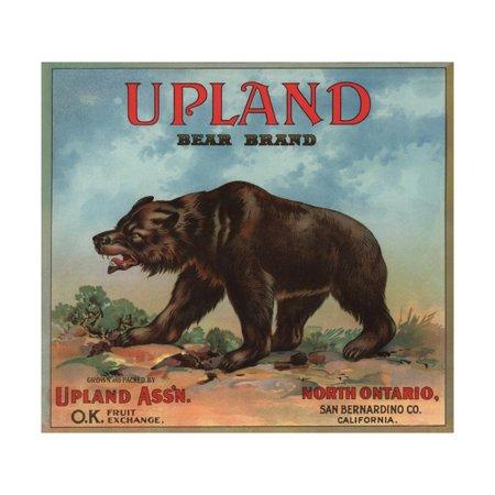 Upland Bear Brand - North Ontario, California - Citrus Crate Label Print Wall Art By Lantern (Ontario Mills California)