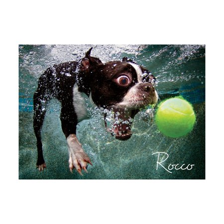 Underwater Dogs Rocco Jigsaw Puzzle Puzzle, 1000 Pieces