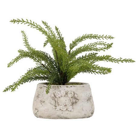 Ophelia Co Heather Spray In Oval Ceramic Floor Foliage Plant In