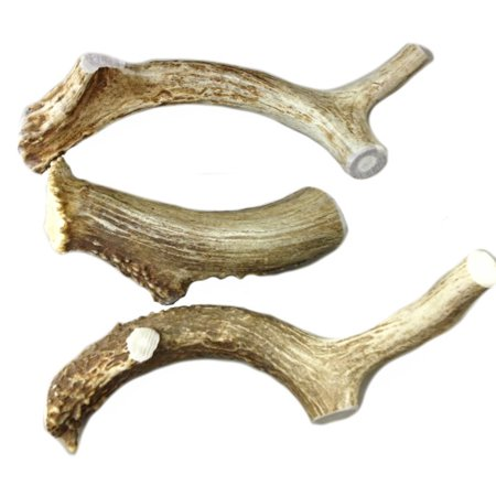 All Natural Deer Antler Dog Chew Large 30-45lbs