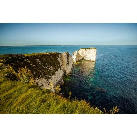 Reef Bay (LAMINATED POSTER Reef Ocean Old Harry Rocks Dorset Rock Swanage Bay Poster Print 11 x)