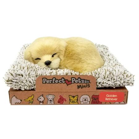 Perfect Petzzz Mini Baby Golden Retriever Puppy (Chocolate Retriever Puppies)