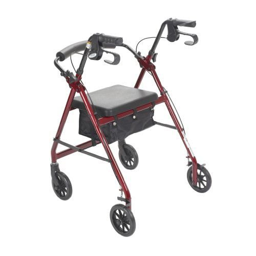 Drive Medical Fold Up And Removable Back Support Rollators 6-in Wheels 300 lb Weight Capactiy