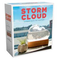 Storm Cloud : A Weather Predicting Instrument (Weather Predictor, Fun Cloud-Shaped Barometer)