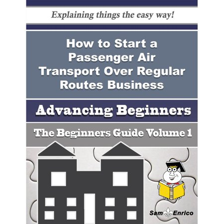 Passengers Guide - How to Start a Passenger Air Transport Over Regular Routes Business (Beginners Guide) - eBook