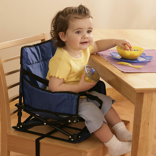 Regalo Portable Booster & Activity Chair