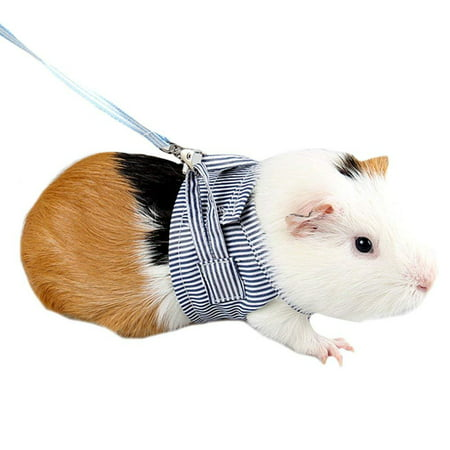 Pet Hamster Traction Strap Outdoor Training Soft Cotton Clothes Rope for Hamster Guinea Pig - Guinea Pig Halloween Cage