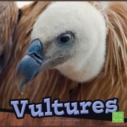 Vultures - Audiobook
