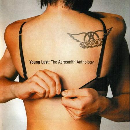 Young Lust: The Aerosmith Anthology (Aerosmith Van)
