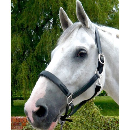 Mark Todd Patent Leather Headcollar - image 1 of 1