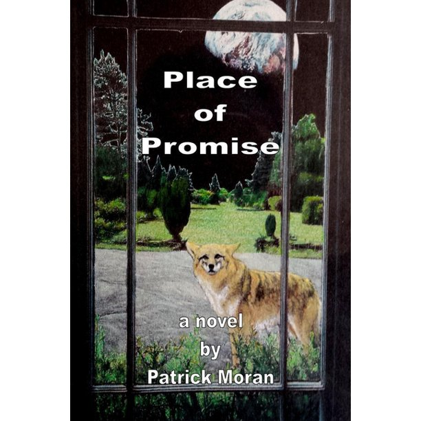 Place of Promise (Paperback)