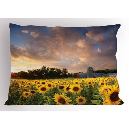 Minnesota Pillow Sham, Field of Yellow Sunflowers in a Minnesota Farmland below a Dramatic Sunset Sky, Decorative Standard Size Printed Pillowcase, 26 X 20 Inches, Multicolor, by Ambesonne