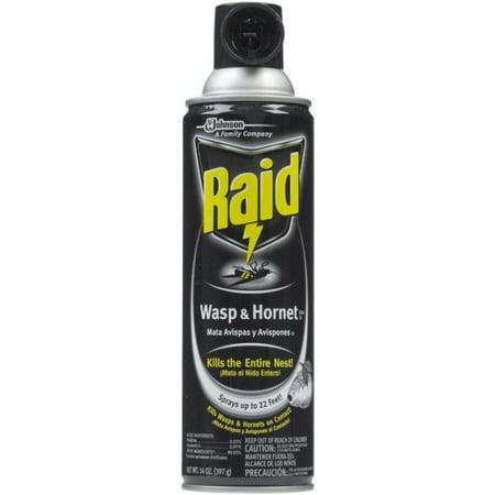 Raid Wasp & Hornet Killer Spray 14 oz (Pack of 4)