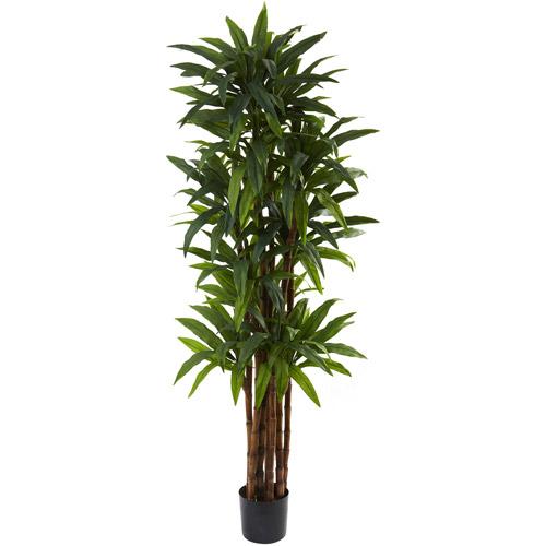 Nearly Natural 6-1/2' Dracaena Tree