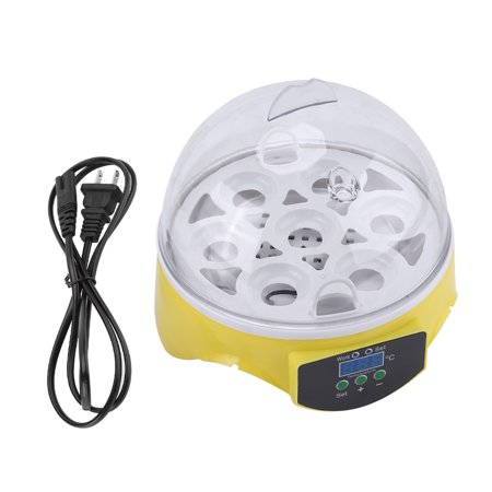 Automatic Clear Digital Chicken Duck Bird 7 Egg Incubator Hatcher Househould USA ()
