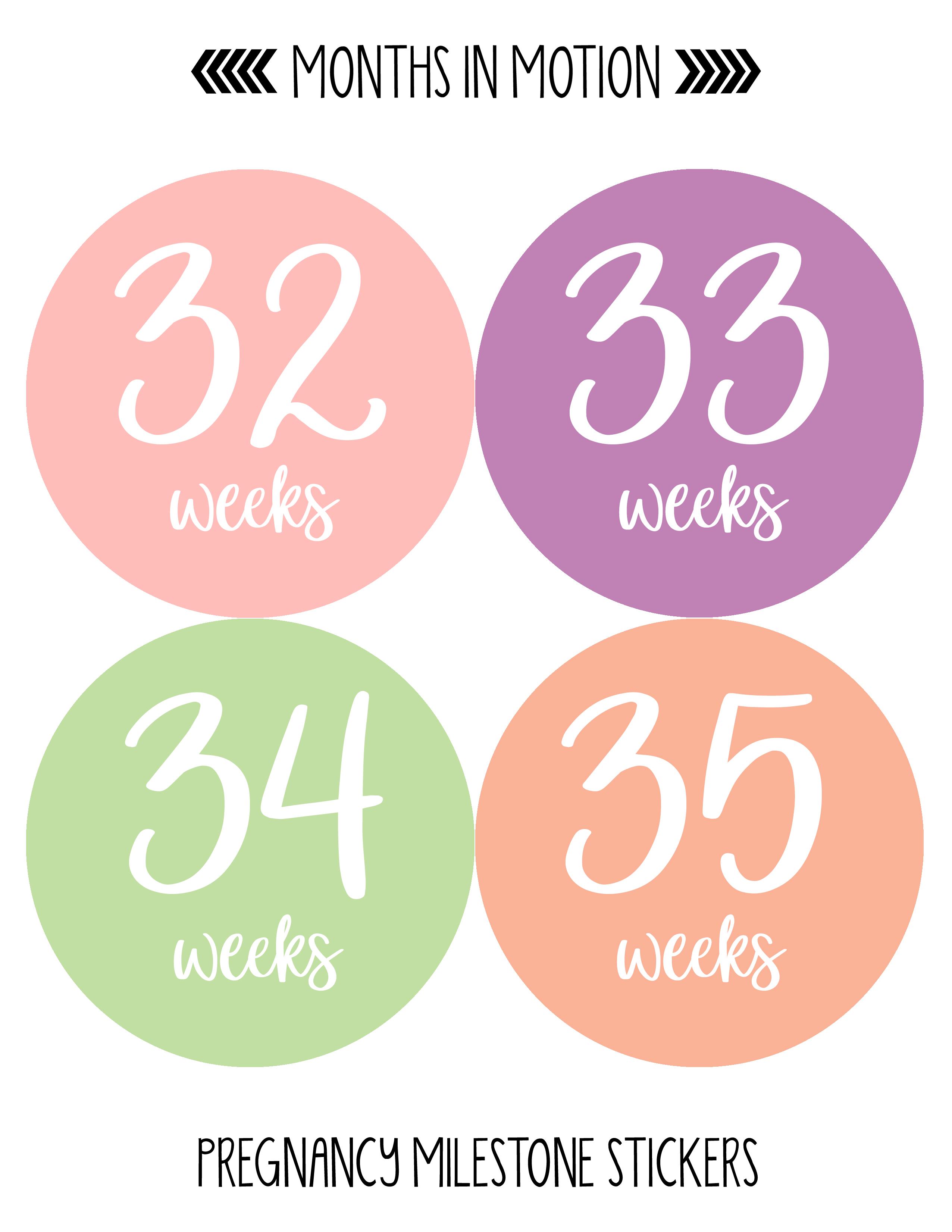 Months In Motion Pregnancy Week By Week Belly Stickers