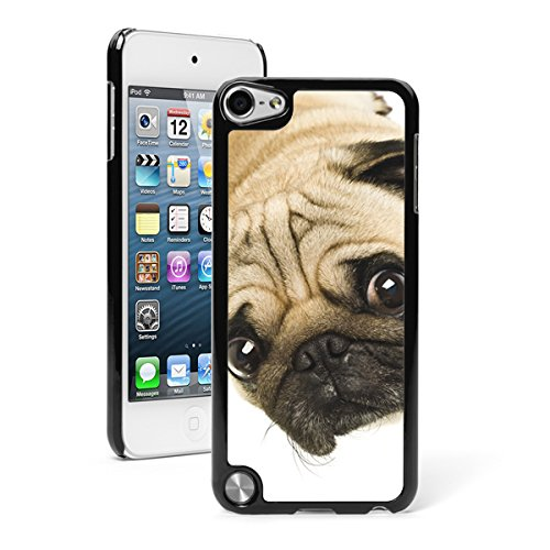For Apple iPod Touch 5th / 6th Generation Hard Back Case Cover Cute Close Up of Pug (Black)