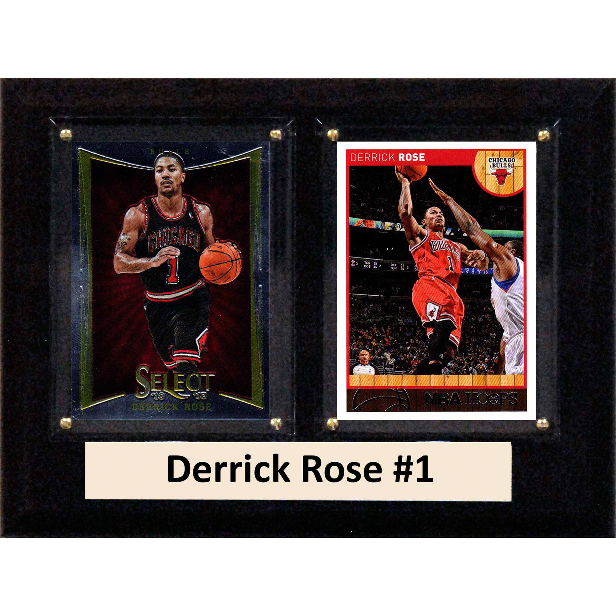 C&I Collectables NBA 6x8 Derrick Rose Chicago Bulls 2-Card Plaque