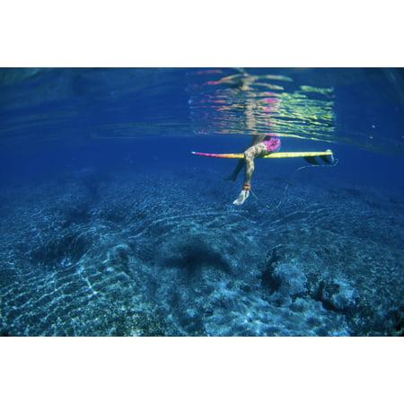 Hawaii Surfer Below Surface PinkYellow Board Clear Water Reflection Canvas Art - Liysa Swart  Design Pics (17 x (Hawaiian Board)