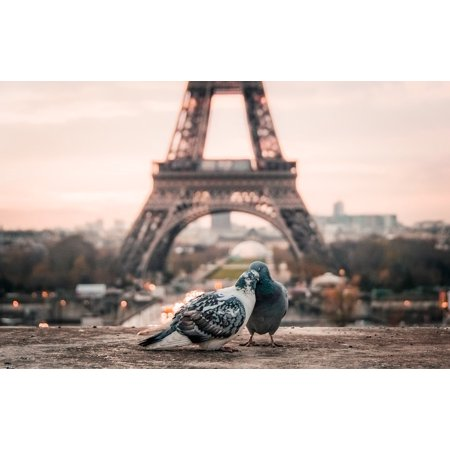 LAMINATED POSTER Urban Eiffel Tower Beak Couple Paris City Bird Poster Print 24 x 36 ()