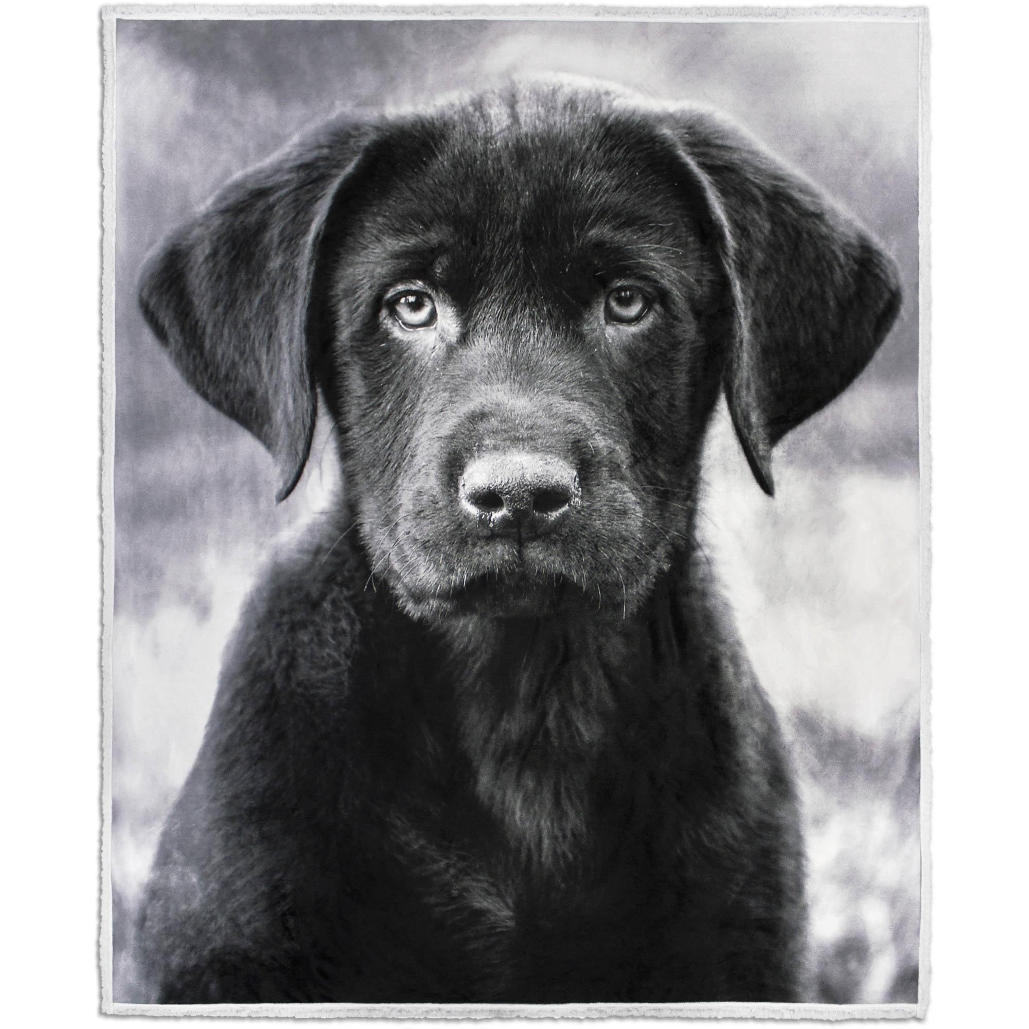 "Photoreal Dog Velvet Plush Throw with Sherpa Reverse, 50"" x 60"""