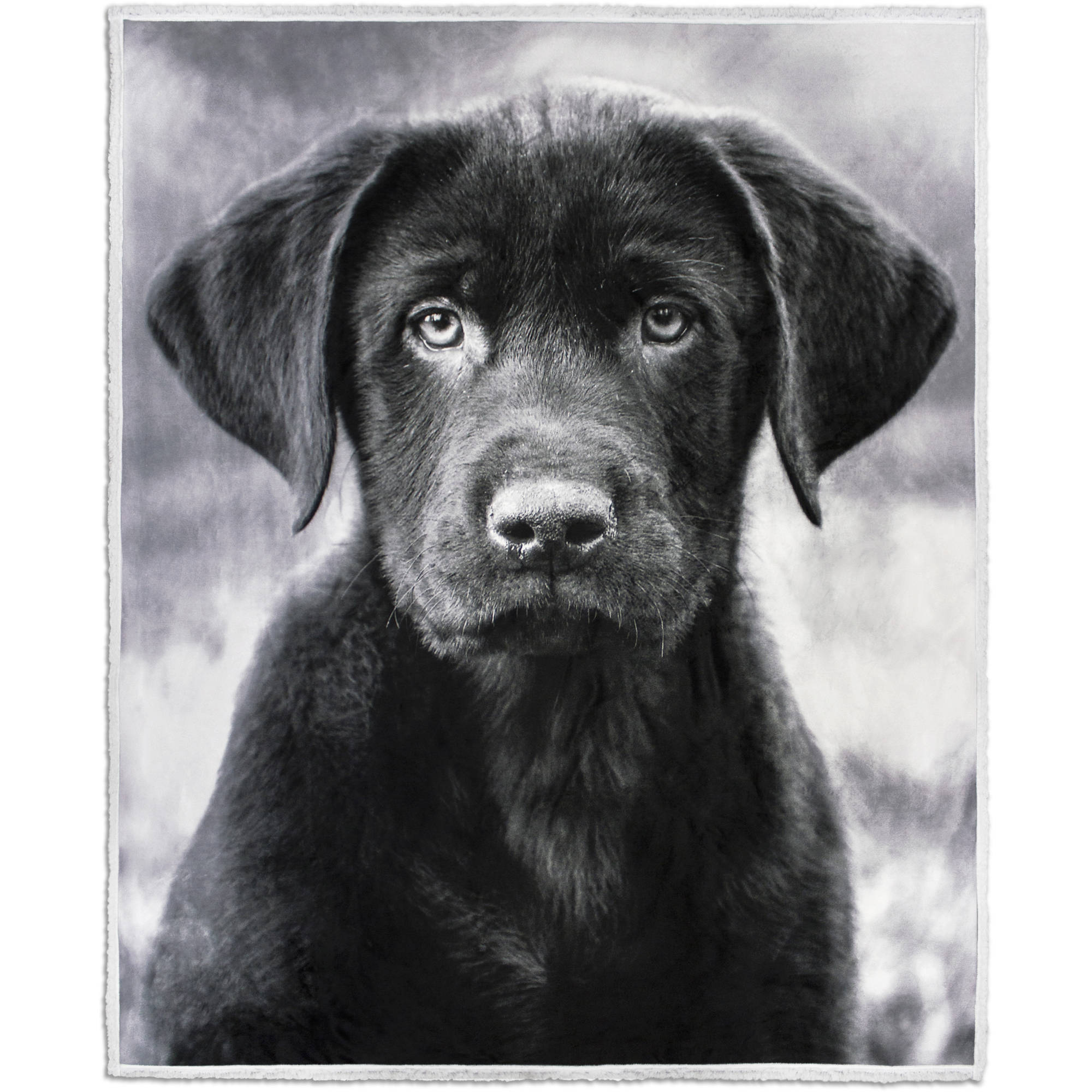 "Photoreal Dog Velvet Plush Throw with Sherpa Reverse, 50"" x 60"""